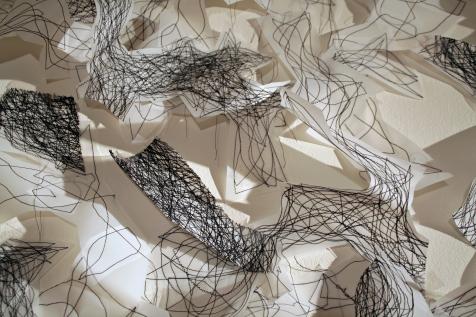 "6. ""Midnight Flight,"" (Detail) 2016, Dura-Lene plastic and thread, 9'H x 20'W x 6""D."